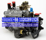 2644C311/22 2644C314/22 Fuel Injection Pump for Perkins 1106