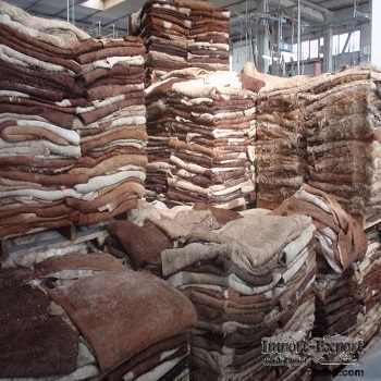 Dry salted and wet salted cow and donkey hide