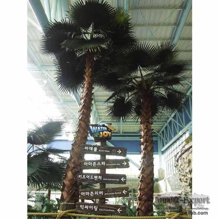 Preserved Washignton Palm