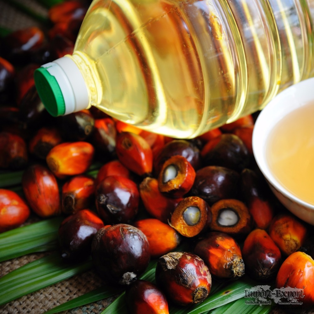 Crude and Refined Palm Oil RBD Palm Olein CP8 and CP10