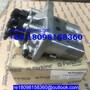 131011070 131017961 131017592 Perkins fuel injection pump