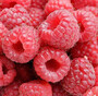 supply the raspberry juice concentrate