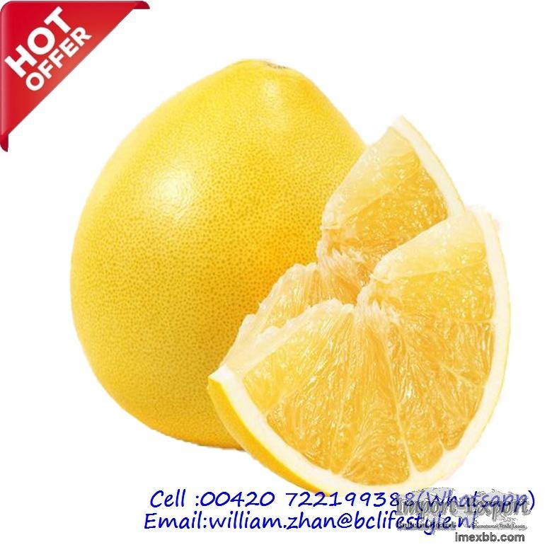 Pomelos / Grape Fruits