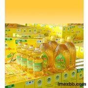 Export Refind Corn Oil