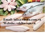 Frozen Vietnamese Catfish Fillet - Pangasius - Basa fish