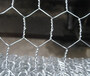 Hexagonal Wire Netting   Galvanized Welded Mesh supplier