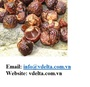 Drying Soap nuts from Vietnam 2020