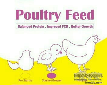 Animal Feed and Poultry Feed