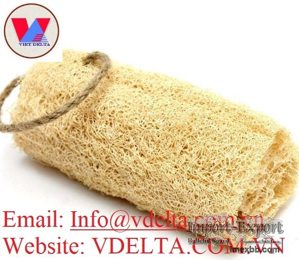 Natural Dried Whole/Cutting Loofah from Vietnam 2020
