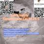 China supply Dimethocaine /Larocaine 94-15-5 Dimethocaine HCL 553-63-9