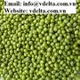 VIETNAM GREEN MUNG BEANS BEST PRICE