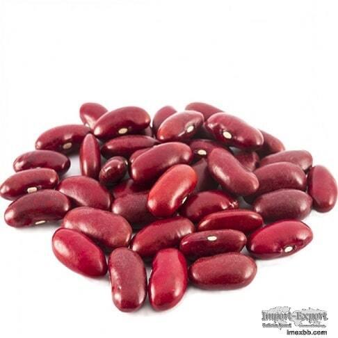 Kidney Beans,Peas & Lentils for Sale