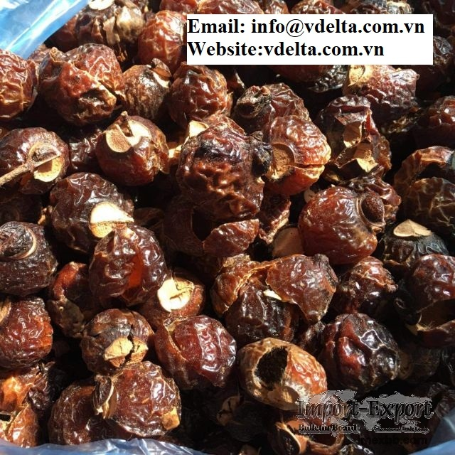 Sapindus mukorossi  Nut Organic Soap Certified