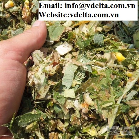 Corn With Molasses Hot Selling Animal Feed