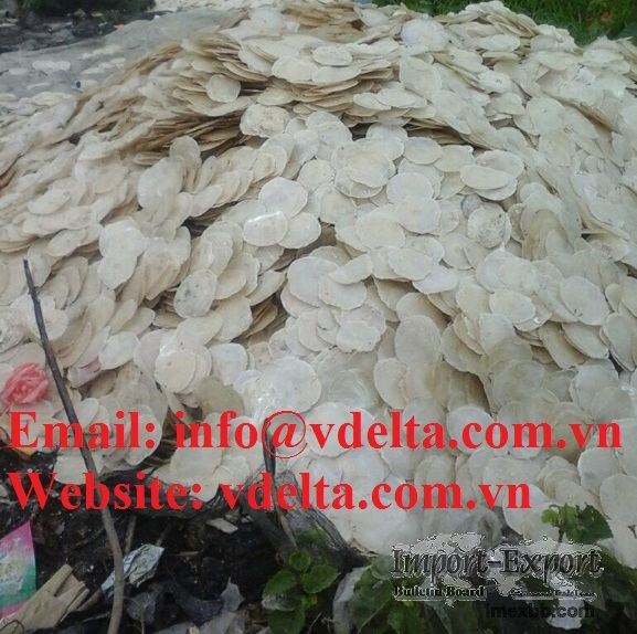 Dried oyster shell