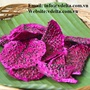 BEST QUALITY DRIED MIXED FRUIT/ DRIED DRAGON FRUIT FROM VIETNAM
