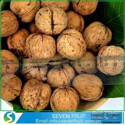 Wholesale Whole Walnut In Shell