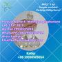 Hot sale 4'-Methylpropiophenone CAS 5337-93-9 +8619930505014