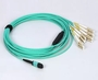 MTP 12F MPO To LC Breakout Cable OM3 OM4 LSZH PVC
