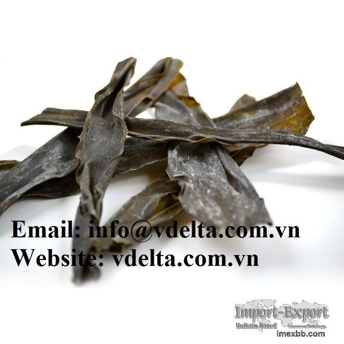 Kombu/Dried Dashi Kombu Kelp/Natural Seaweed