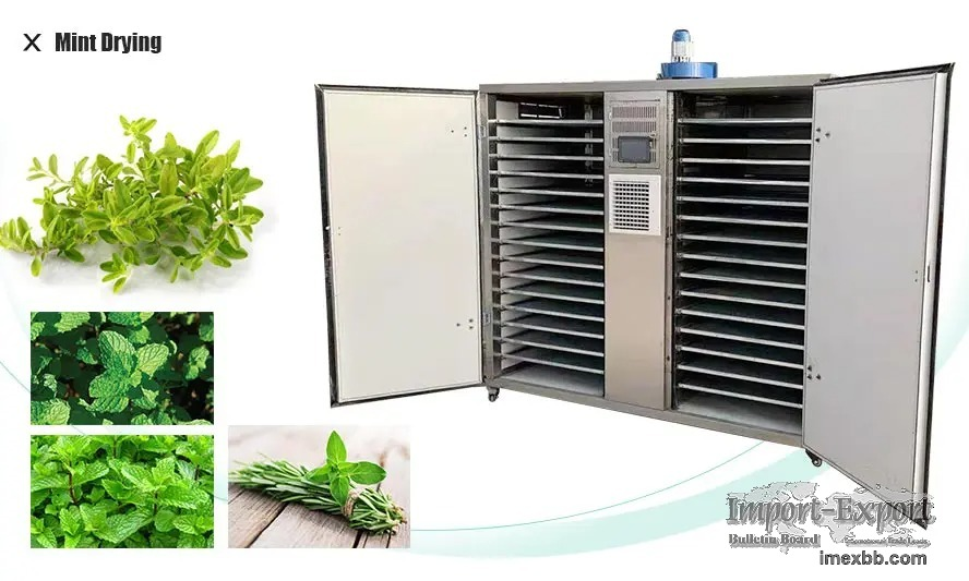 How to dry mint by the electric drying oven?