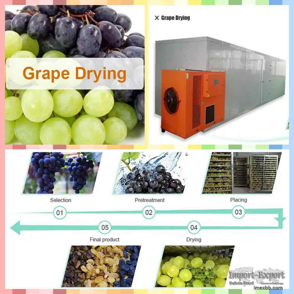 Grapes Dryer  Grapes Drying Machine