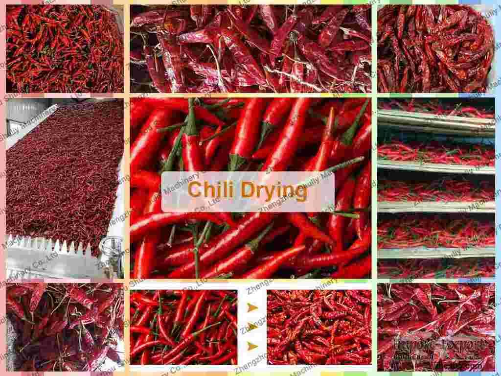 Chili dryer  Pepper drying equipment  Chili powder drying machine