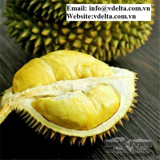 High Quality frozen durians from viet nam