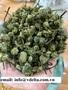 Dried Herbal Tea/Fake Ginseng Flower/Sanqi Flower From Vietnam