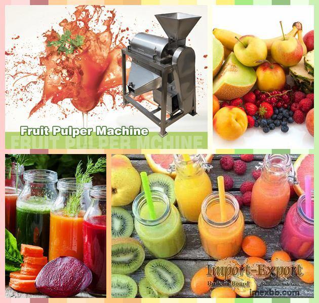 Fruit Pulper Machine  Fruit Juicer