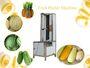 Automatic Fruit Peeling Machine  Pumpkin Peeler Machine