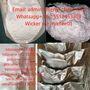 CAS 288573-56-8 /443998-65-0Mexico(admin@senyi-chem.com WP+8615512453308