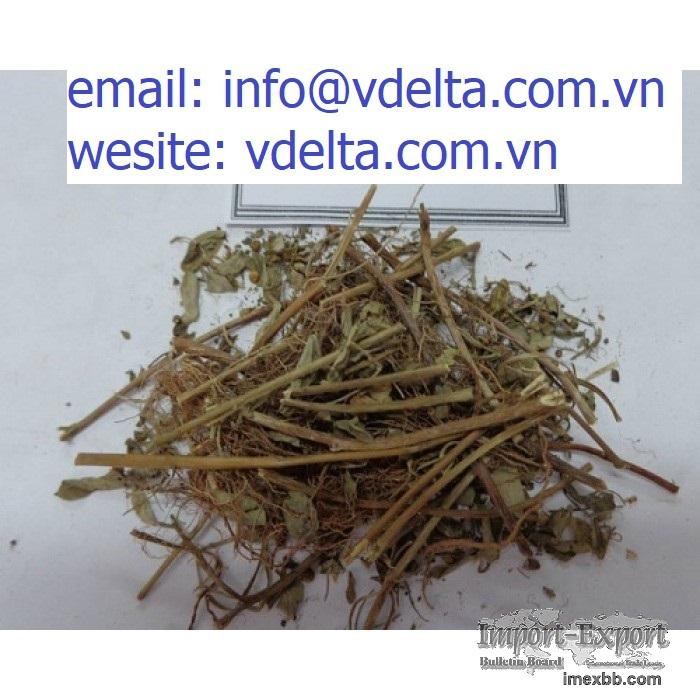 Wholesale gallic acid phyllanthus urinaria extract