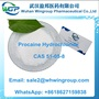 Buy High Quality CAS 51-05-8 Procaine HCl for Pain Relief +8618627159838