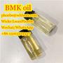 Factory Supply BMK Oil Pmk Oil CAS 5413-05-8/20320-59-6/28578-16-7